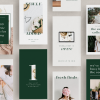 audrey instagram templates for canva